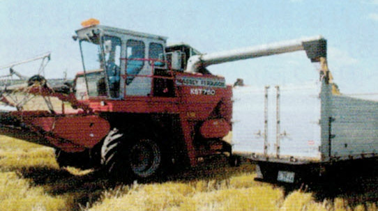 HB-101と顆粒HB-101で収量が増えます。