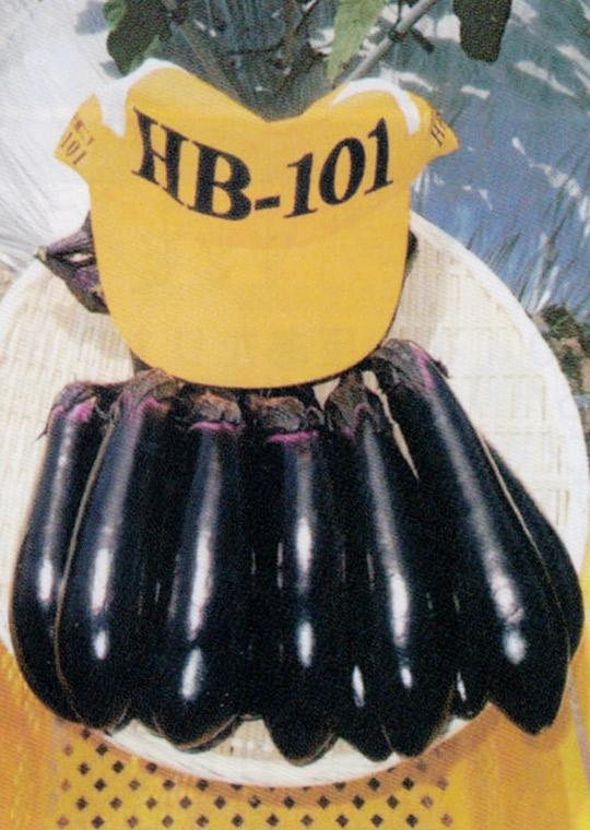 HB-101で艶も味も良くなります。