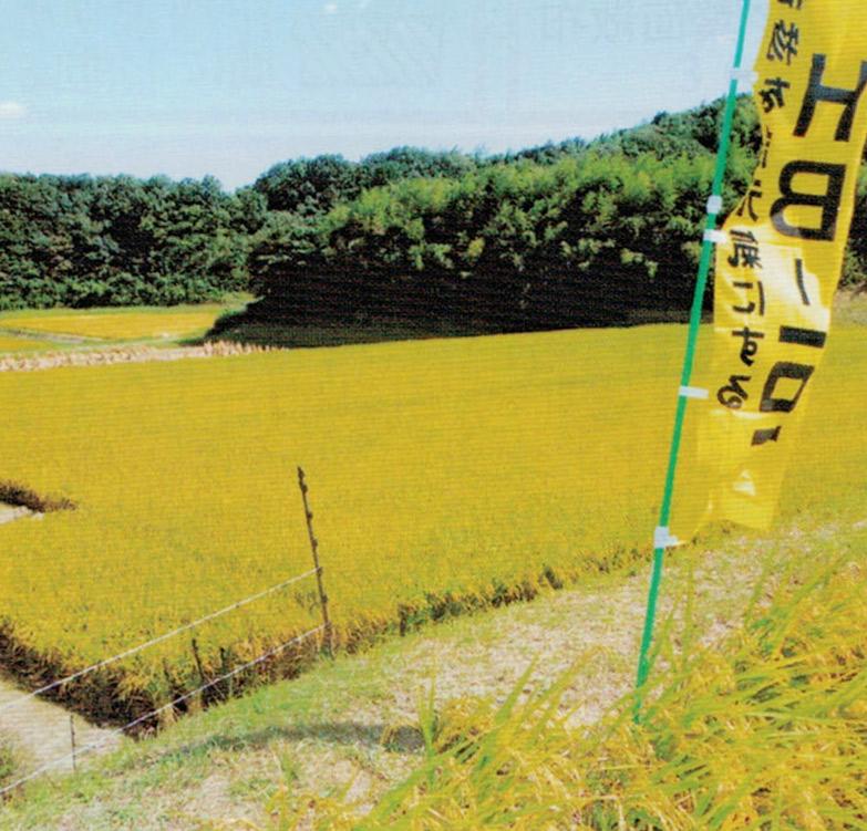 HB-101で米の食味が向上し、お客様においしいと喜んでいただいています。