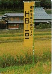 最高級の山田錦を作るために30年間、HB-101を使い続けている