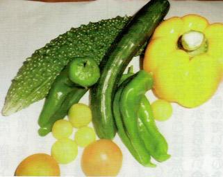 津波後に、ようやくHB-101で野菜がたくさん取れるようになった