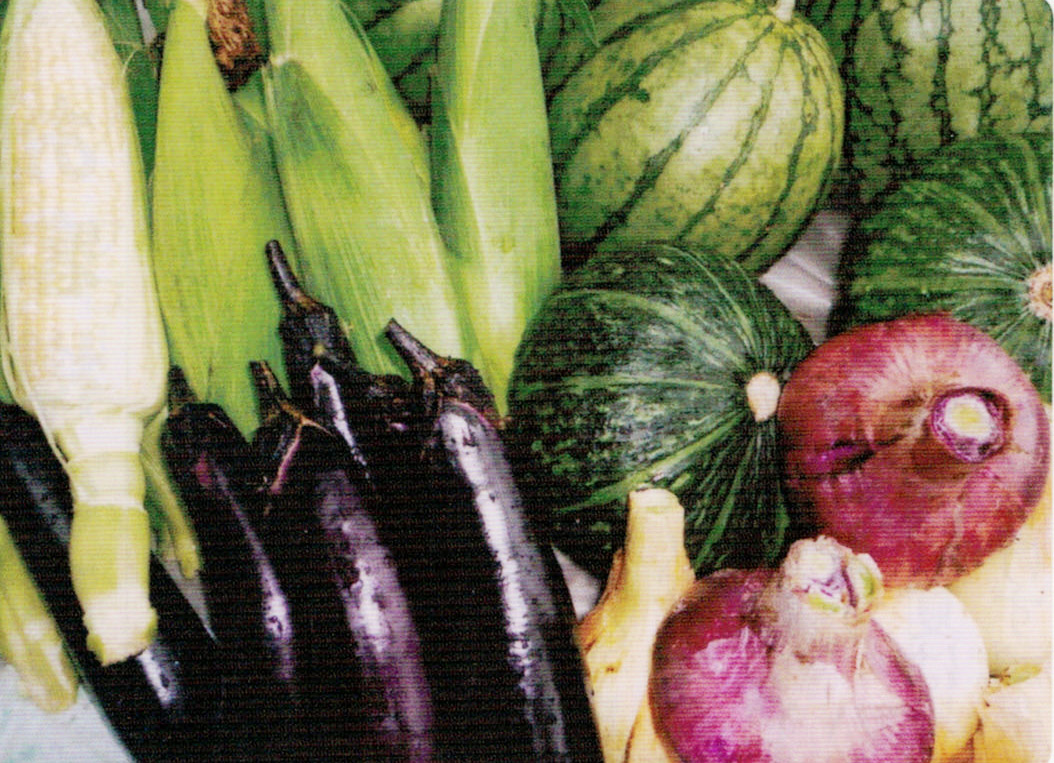 年間を通し、HB-101で充実した作物ができ、とてもおいしいと好評です。