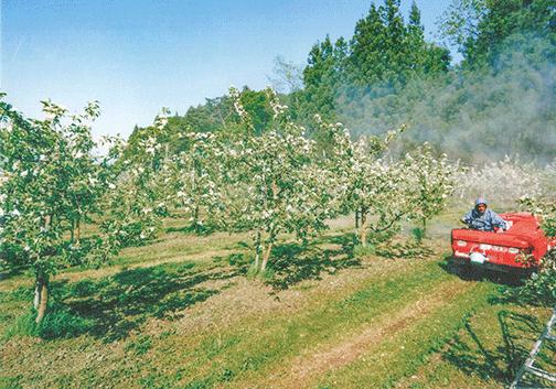 人の運転する走行式噴霧器でHB-101の5,000倍液を散布しています(令和1年5月17日)。
