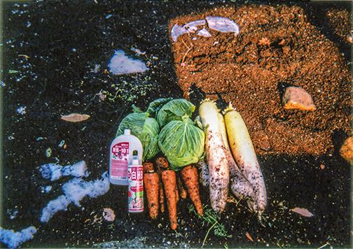 HB-101で野菜が素晴らしい出来です。