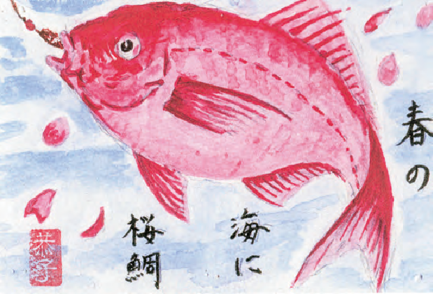 絵手紙を80才頃から描き始め、絵手紙の本を見て我流で300枚程、描きました。この「春の海に桜鯛」は最近、書いた絵手紙です。