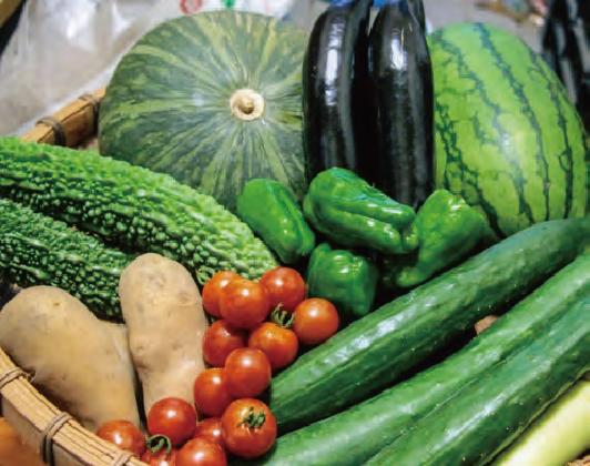野菜はHB―101で光沢があり、病気にならず、おいしいと評判です。
