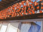 HB-101で栽培した野菜と果樹にHB-101健康栽培のラベルを貼って販売しています。