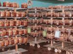 HB-101を使った菌床しいたけ栽培ルームは冷涼で、清潔な環境になっています。