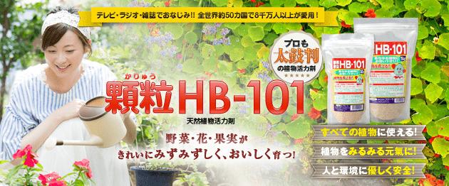 植物の土づくり、土壌改良に顆粒HB-101